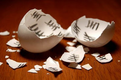 Image of an egg's shell that is broken open, with count marks in the inside.